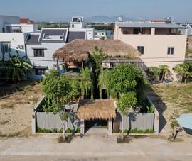 Ngôi nhà mái lá cỏ tranh nổi bật giữa lòng đô thị