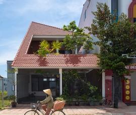 Ngôi nhà có hệ mái như chiếc nón lá khổng lồ ở Nghệ An