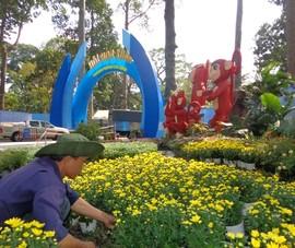 Hội Hoa Xuân 2016 trước ngày mở cửa
