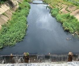 Sở TN&MT nói về  tình trạng ô nhiễm  kênh Ba Bò