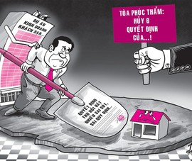 Thua kiện, chủ tịch tỉnh đề nghị giám đốc thẩm