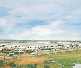 Thanh tra kết luận việc sử dụng đất tại các Khu công nghiệp ở TP.HCM