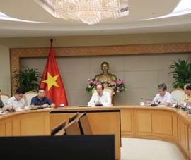 Tù 15-8, đăng ký ô tô, xe máy trực tuyến ở Hà Nội, TP.HCM