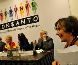 Những di sản 'quái thai' của Monsanto
