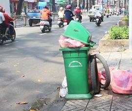 Có thùng rác, vẫn tiện đâu vứt đó