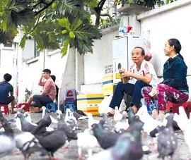 Sài Gòn, rộng - chật và mênh mông tình người