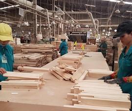 Thủy sản, gỗ gồng mình ứng phó với khách Mỹ, EU hủy đơn hàng