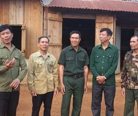 Hủy 2 bản án kết tội 6 cựu chiến binh hủy hoại rừng