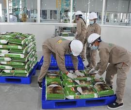 Nông sản Việt có thêm cơ hội mới