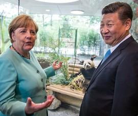 Bước đi muộn màng của ông Tập Cận Bình với EU