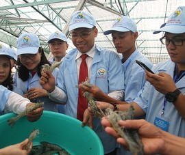 Nuôi cá, tôm… bằng công nghệ số, thu 1 tỉ/ha