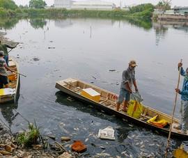 Video: Vớt hơn 2 tấn cá chết trong hồ ở TP.HCM