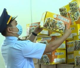 Video: Gia Lai tạm giữ 6.000 chiếc bánh trung thu không rõ nguồn gốc xuất xứ