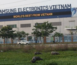 Khai tử Note 7 và số phận nhà máy Samsung SDI Việt Nam