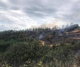 Tham gia chữa cháy rừng keo, 1 người đàn ông tử vong