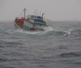 Tàu Cảnh sát biển 8002 cứu 18 người gặp nạn ở Quảng Ngãi trong bão số 5