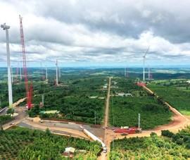 Một doanh nghiệp chở thiết bị điện gió bị thu hồi giấy phép vì để lây COVID-19