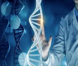 Bất ngờ nguồn gốc người Việt từ công bố nghiên cứu bộ gen