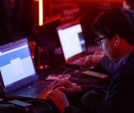 Bộ TT&TT ra chỉ thị chống vi phạm pháp luật trên internet