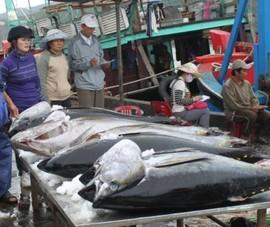Thêm ba loại thủy sản Việt Nam được Trung Quốc cấp 'visa'