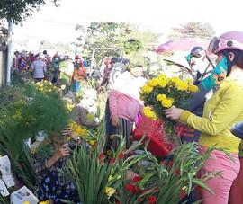 Thời tiết dịp Tết Canh Tý: Nơi giá rét, chỗ nắng chói chang
