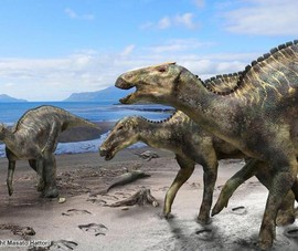 Phát hiện loài khủng long mới ở Nhật Bản