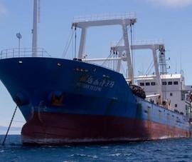 Ecuador: Tàu Trung Quốc đang 'cưỡng hiếp' Galapagos