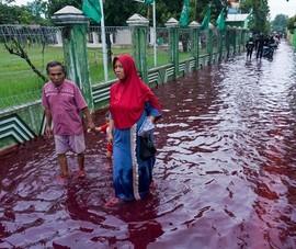 Indonesia: Nước lụt ngập đỏ như máu