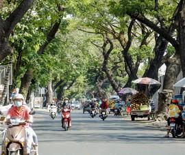 Ảnh: 2 dự án 300 tỉ giúp gỡ rối kẹt xe cửa ngõ Tân Sơn Nhất