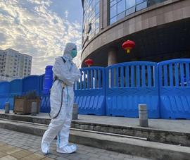 WHO sắp công bố báo cáo nguồn gốc COVID-19, Bắc Kinh đón đầu?