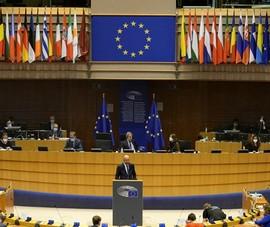 Nghị viện châu Âu ra nghị quyết đối phó Nga, bảo vệ Ukraine