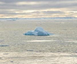 Các nước Bắc Cực cam kết đối phó tình trạng ấm lên toàn cầu