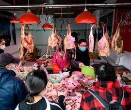 Trung Quốc thông báo có ca nhiễm cúm A/H10N3 đầu tiên trên thế giới