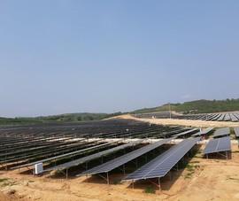 Bộ Công Thương sẽ thí điểm mua điện mặt trời giá thấp