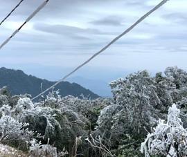 Đường dây điện, trạm biến áp ở Cao Bằng bị băng tuyết bao phủ