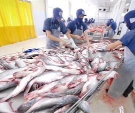 Xuất khẩu cá da trơn sang Campuchia bình thường trở lại
