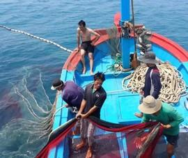 Lệnh cấm đánh bắt cá ở Biển Đông của Trung Quốc là vô giá trị