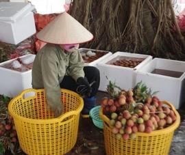 Bộ Công Thương kêu gọi hỗ trợ tiêu thụ nông sản Bắc Giang