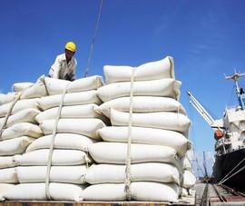 Nhập khẩu gạo Ấn Độ tăng đột biến, hỏa tốc làm việc với 5 công ty