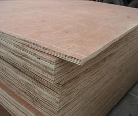 Mỹ gia hạn điều tra chống lẩn tránh thuế với gỗ dán cứng Việt Nam