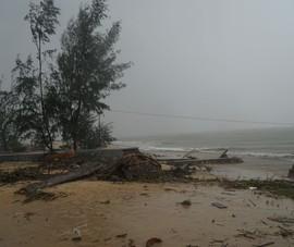 Áp thấp nhiệt đới có thể mạnh lên thành bão ở biển Đông