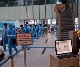 Đà Nẵng, Quảng Nam đón 448 công dân Việt Nam về từ Hàn Quốc