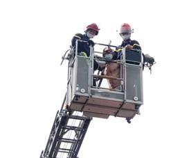 Giải cứu bệnh nhân 38 tuổi định nhảy tầng 2 bệnh viện tự tử