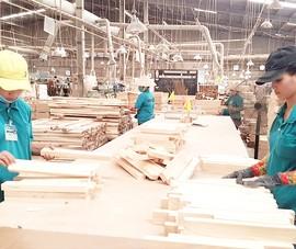 Gỗ Việt xuất khẩu phải giải trình với Mỹ