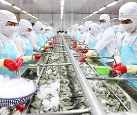 Đại gia Việt tự làm container, cạnh tranh với Trung Quốc