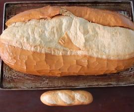Chiêm ngưỡng ổ bánh mì nặng gần 2 kg giá 70.000 đồng ở Sài Gòn