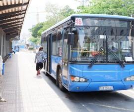 Xe buýt không được dừng đỗ, đón khách ở quận Gò Vấp