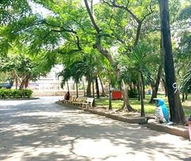 Điều chỉnh giao thông đường Bàu Cát, quận Tân Bình