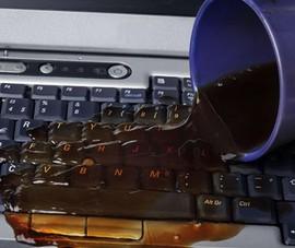 Vô tình đổ nước lên laptop, cần phải làm gì?