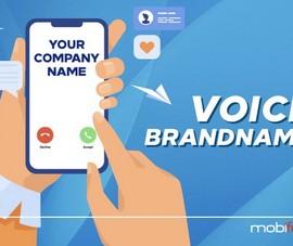Cách quảng bá doanh nghiệp mới nhờ dịch vụ Voice Brandname